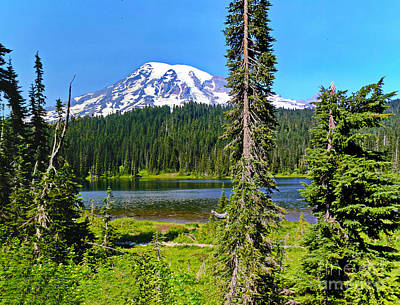 Photograph - Mt. Rainiier And Reflection Lake  by Ansel Price