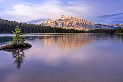 Photograph - Mt. Rundle by Jack Bell