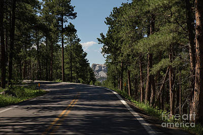 Nikki Vig Royalty-Free and Rights-Managed Images - Mt Rushmore View by Nikki Vig