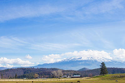 Photograph - Mt Shasta by Digiblocks Photography