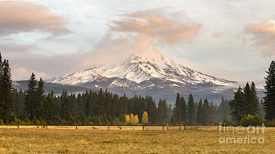 Photograph - Mt Shasta Large by Randy Wood