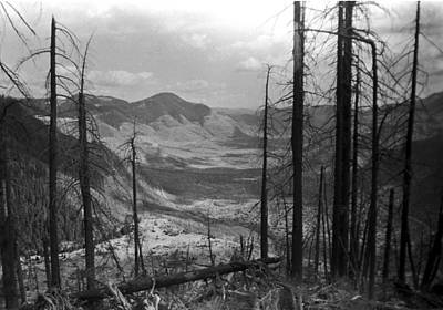 Photograph - Mt St Helen Aftermath by William Kimble