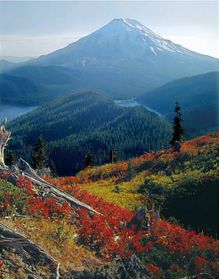Photograph - 1m4903-mt. St. Helens 1975  by Ed  Cooper Photography