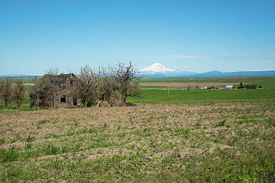 Photograph - Mt St. Helens And Old House by Tom Cochran