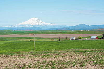 Photograph - Mt St Helens And Red Barn by Tom Cochran