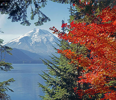 Photograph - 1m4909-mt. St. Helens And Spirit Lake Pre Eruption  by Ed  Cooper Photography