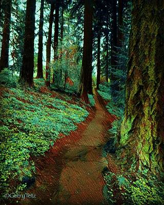 Photograph - Mt. Tabor Afternoons  by Gerry Tetz