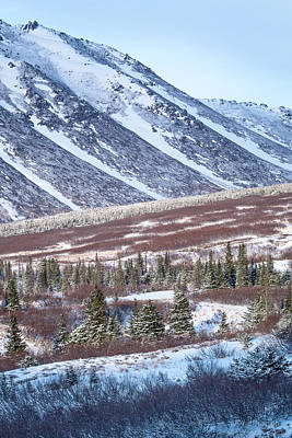 Photograph - Mt Wolverine And Foothills by Tim Newton