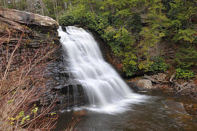 Muddy Creek Falls Art Print by Dung Ma