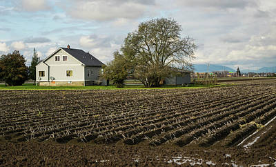 Photograph - Muddy Farm Field In November by Tom Cochran