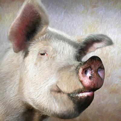 Muddy Pig Portrait Art Print