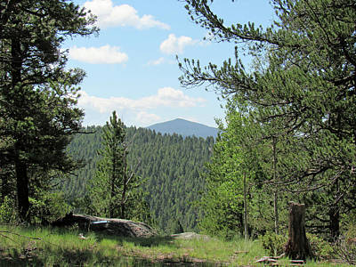 Photograph - Mueller State Park Colorado 11 by Pamela Critchlow