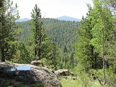 Photograph - Mueller State Park Colorado 14 by Pamela Critchlow