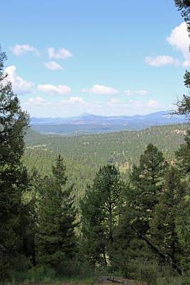 Photograph - Mueller State Park Colorado 25 by Pamela Critchlow
