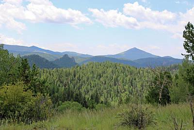 Photograph - Mueller State Park Colorado 36 by Pamela Critchlow