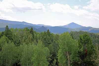 Photograph - Mueller State Park Colorado 37 by Pamela Critchlow