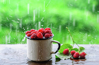 Raspberry Photograph - Mug With Juicy Raspberry At Summer Rain by Tatyana Aksenova
