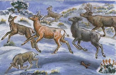 Painting - Mule Deer Surprise by Dawn Senior-Trask