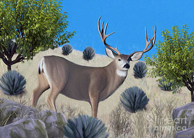 Digital Art - Mule Deer Trophy Buck by Walter Colvin