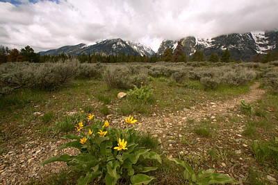 White Cap Digital Art - Mule Ear And Mountains by Amanda Kiplinger