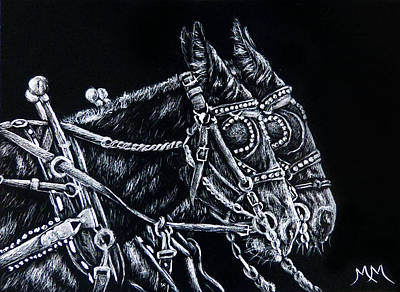Drawing - Mule Team  -  Sa108 by Monique Morin Matson