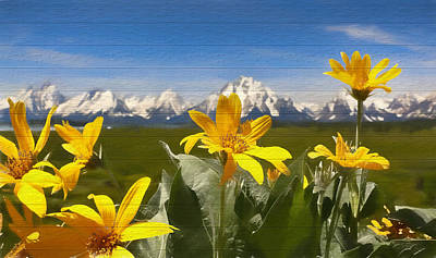 Yellowstone Mixed Media - Mules Ear Flowers And Grand Tetons by Dan Sproul