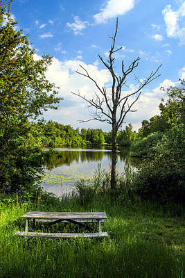 Photograph - Mulsmark Pond by John Bushnell