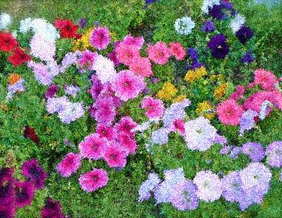 Multi Color Flowers Art Print by Ralph Liebstein