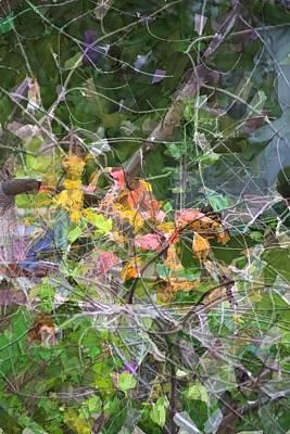 Photograph - Multi-color Mosaic by Ellen O'Reilly