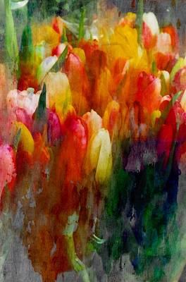 Photograph - Multi Color Tulips by Joseph Frank Baraba