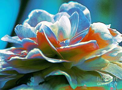 Photograph - Multi Colored Peony by Kathleen Struckle