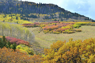 Photograph - Multi Fall Colored Hills Of Last Dollar Road by Ray Mathis