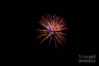 Photograph - Multicolor Pyrotechnics by Suzanne Luft