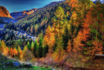 Photograph - Multicolor Wood by Roberto Pagani