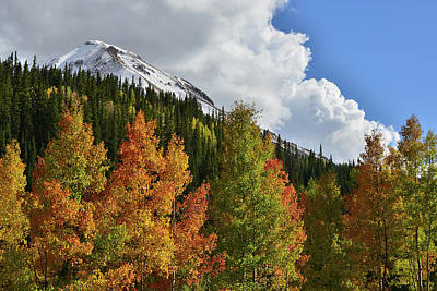 Photograph - Multicolored Aspens Below Red Mountain by Ray Mathis