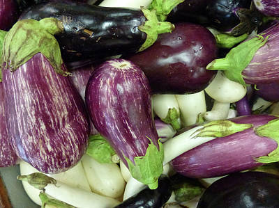 Photograph - Multicolored Eggplants by Barbara Jacobs