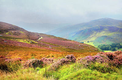 Photograph - Multicolored Hills. Wicklow. Ireland by Jenny Rainbow