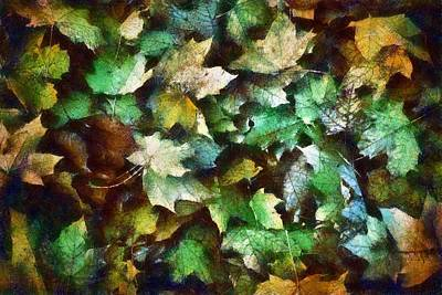 Photograph - Multicolored Leaves by Patricia Strand