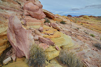 Photograph - Multicolored Slopes Of Valley Of Fire by Ray Mathis