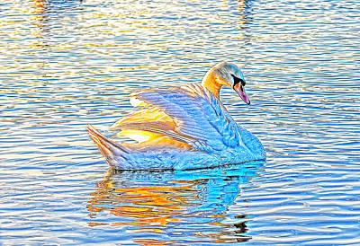 Multicolour Swan Art Print