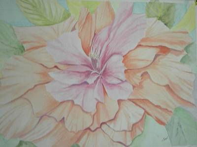 Art Print featuring the painting Multipetaled Pink Coral Hibiscus by Hilda and Jose Garrancho