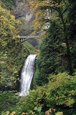 Keith Richards - Multnomah Falls 3 by D