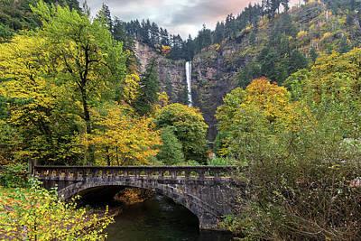 Photograph - Multnomah Falls Along Old Columbia Highway by David Gn