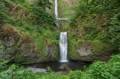 Photograph - Multnomah Falls In Spring by Greg Nyquist