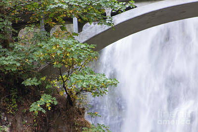 Photograph - Multnomah Falls In The Columbia River Gorge In Oregon 5d3599 by Wingsdomain Art and Photography