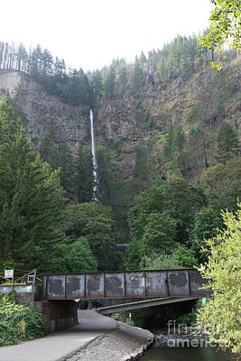 Photograph - Multnomah Falls In The Columbia River Gorge In Oregon Dsc6505 by Wingsdomain Art and Photography