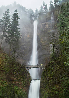 Fir Trees Photograph - Multnomah Falls In The Rain by Angie Vogel