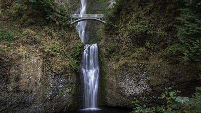 Photograph - Multnomah Falls by Michael Donahue