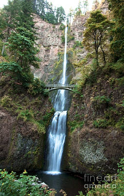 Photograph - Multnomah Falls by Photography by Laura Lee