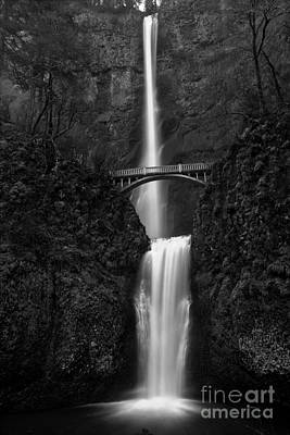 Photograph - Multnomah In Black And White by Adam Jewell